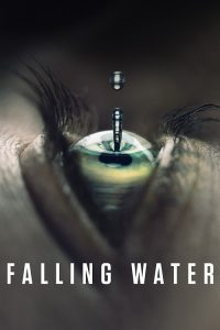 falling-water-first